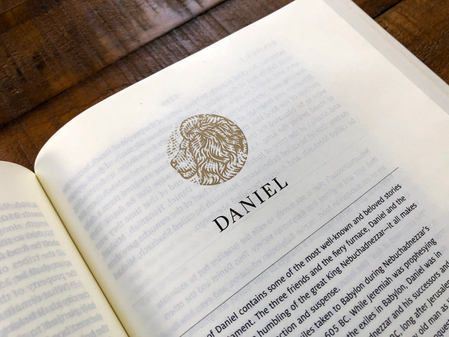 The heading image for the book of Daniel in the Story of Redemption Bible